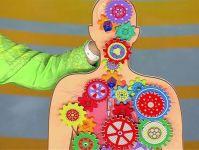 Какая еда убивает щитовидку?