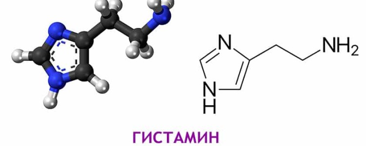 Гистамин — что это такое?
