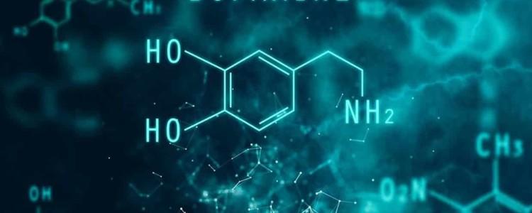 Дофамин (Dofamine) — инструкция по применению, состав, аналоги препарата, дозировки, побочные действия