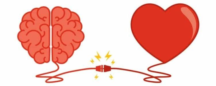 Химия любви — это болезнь, гормоны, феромоны, исследования ученых, сколько длится реакция