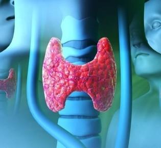 Сколько живут пациенты при раке щитовидной железы?