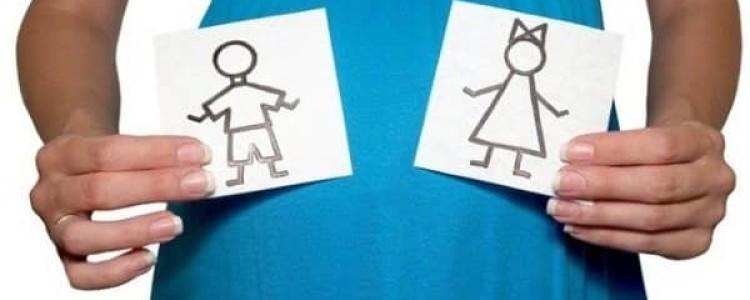 Можно ли повлиять на пол будущего ребенка: от чего и кого из родителей зависит