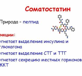 Гормон соматостатин и его функции