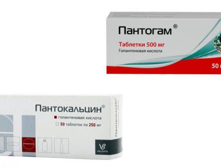 Пантогам или Пантокальцин: что лучше?