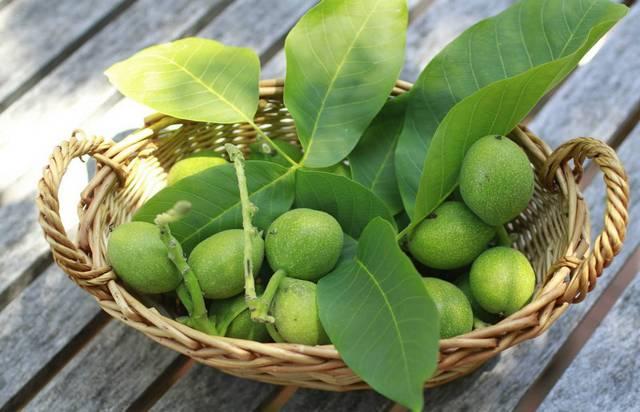 Рецепты из грецких орехов для щитовидной железы
