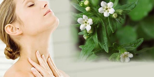 Лечение воробейником щитовидной железы