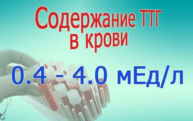 Норма гормона ТТГ щитовидной железы