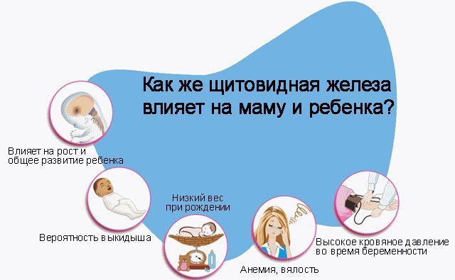 Щитовидная железа во время беременности