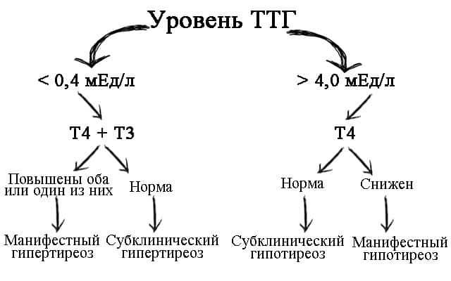 Значение ТТГ при гипотиреозе