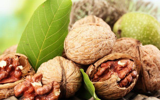 Грецкий орех для лечения щитовидной железы