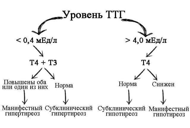 Диагностика по уровню ТТГ