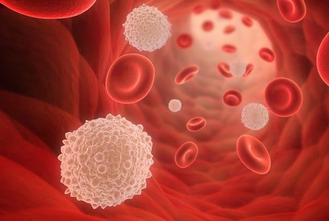 Тироксин в крови