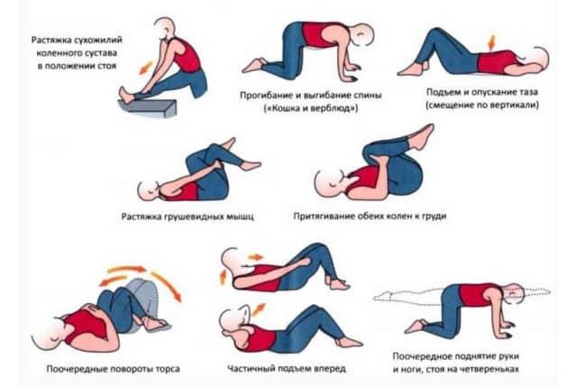 Упражнения при щитовидке